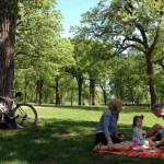 Eight Essentials for the Perfect Picnic