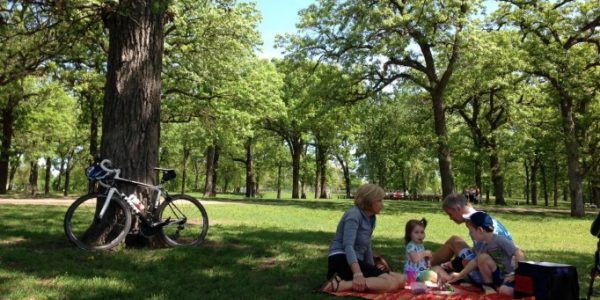 8 Picnic Essentials | Twin Cities Mom Collective