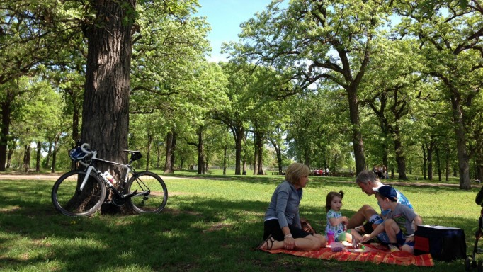 Eight Essentials for the Perfect Picnic | Twin Cities Moms Blog