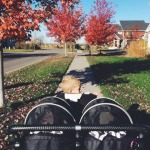 Why The Stroller Days Are The Best Days