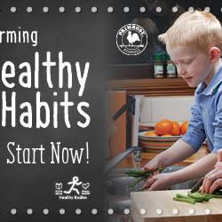 Healthy Habits school website carousel graphic