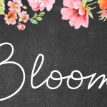 Event Announcement: Bloom – A Growing Family Event presented in partnership with Park Nicollet