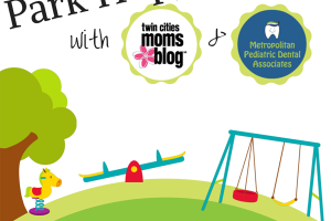 park hopping with twin cities moms blog