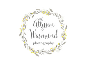 logo039Allyson Wasmund
