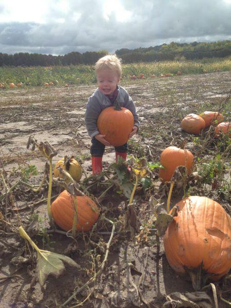 Carpe Halloween | Twin Cities Moms Blog