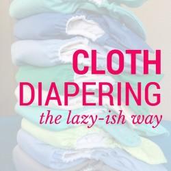 cloth dipe