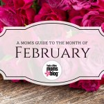 A Twin Cities Mom's Guide to Month of February 2016