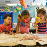 Top Seven Tips to Preparing Your Child for Kindergarten