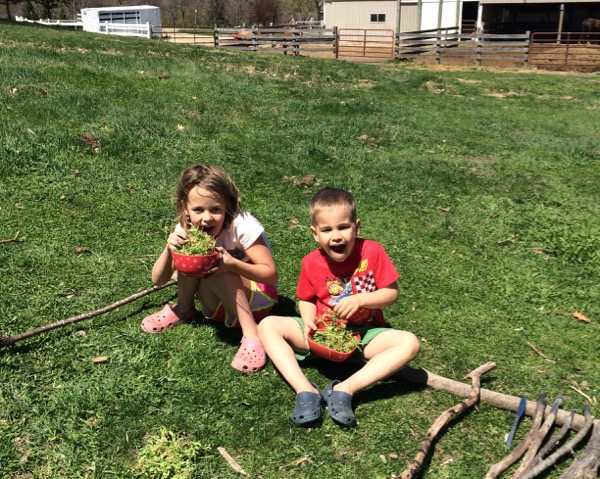 How to Entertain Your Kids Without Even Trying | Twin Cities Moms Blog