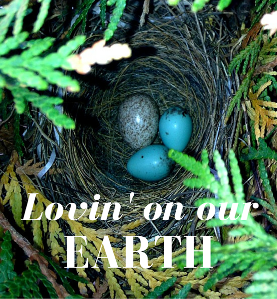 Lovin' On Our Earth | Twin Cities Moms Blog