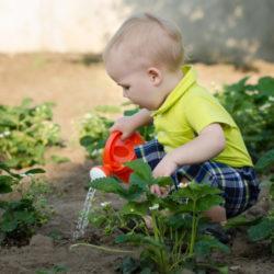 Gardening-Young-Boy