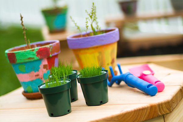 Gardening with Children | Twin Cities Moms Blog