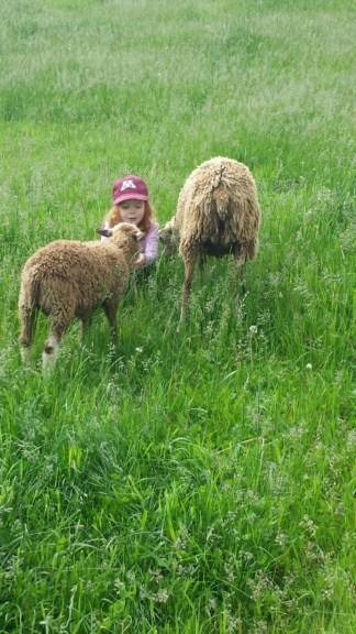 Family Day Trip - Delano & Waconia | Twin Cities Moms Blog