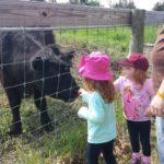 Family Day Trip – Delano & Waconia