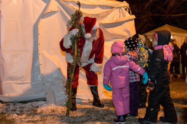 Guide to the Holidazzle | Twin Cities Moms Blog