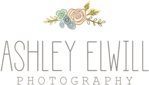 2017 Guide to Twin Cities Photographers | Twin Cities Moms Blog