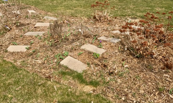 How To Fail At Gardening (An Annual Guide) | Twin Cities Moms Blog