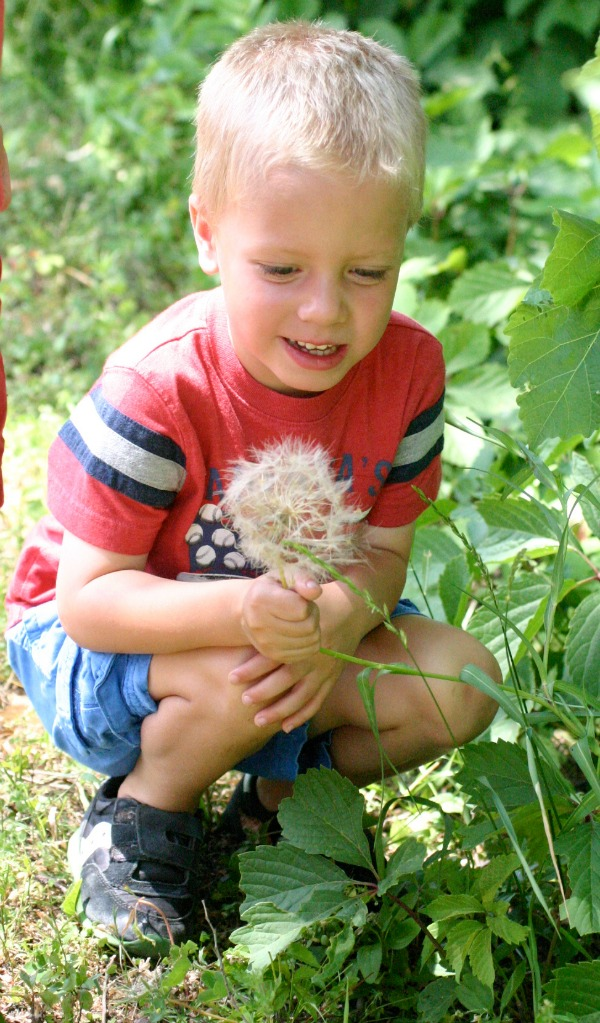 Earth Day Every Day | Twin Cities Moms Blog