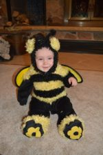 Buzzin' About Bees | Twin Cities Moms Blog