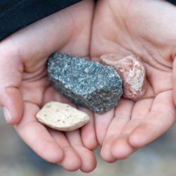 A child holding a collection of rocks.