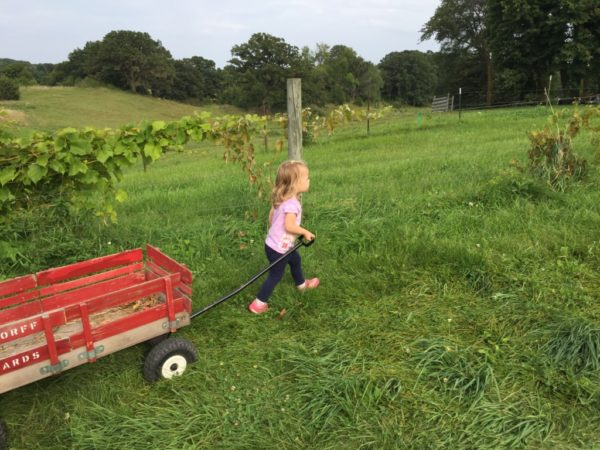 It's An Ordinary Life | Twin Cities Moms Blog