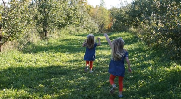 A Child's Pace: Keeping Up while Slowing Down | Twin Cities Moms Blog