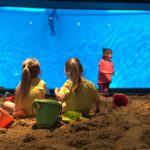 Get a Taste of Summer at Minnesota Zoo's Tropical Beach Party
