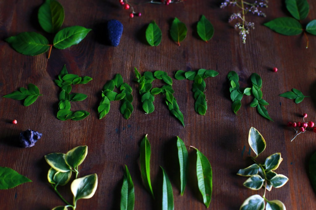 Earth Day Resolutions | Twin Cities Moms Blog