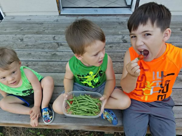 Lessons in Life with Gardening | Twin Cities Moms Blog