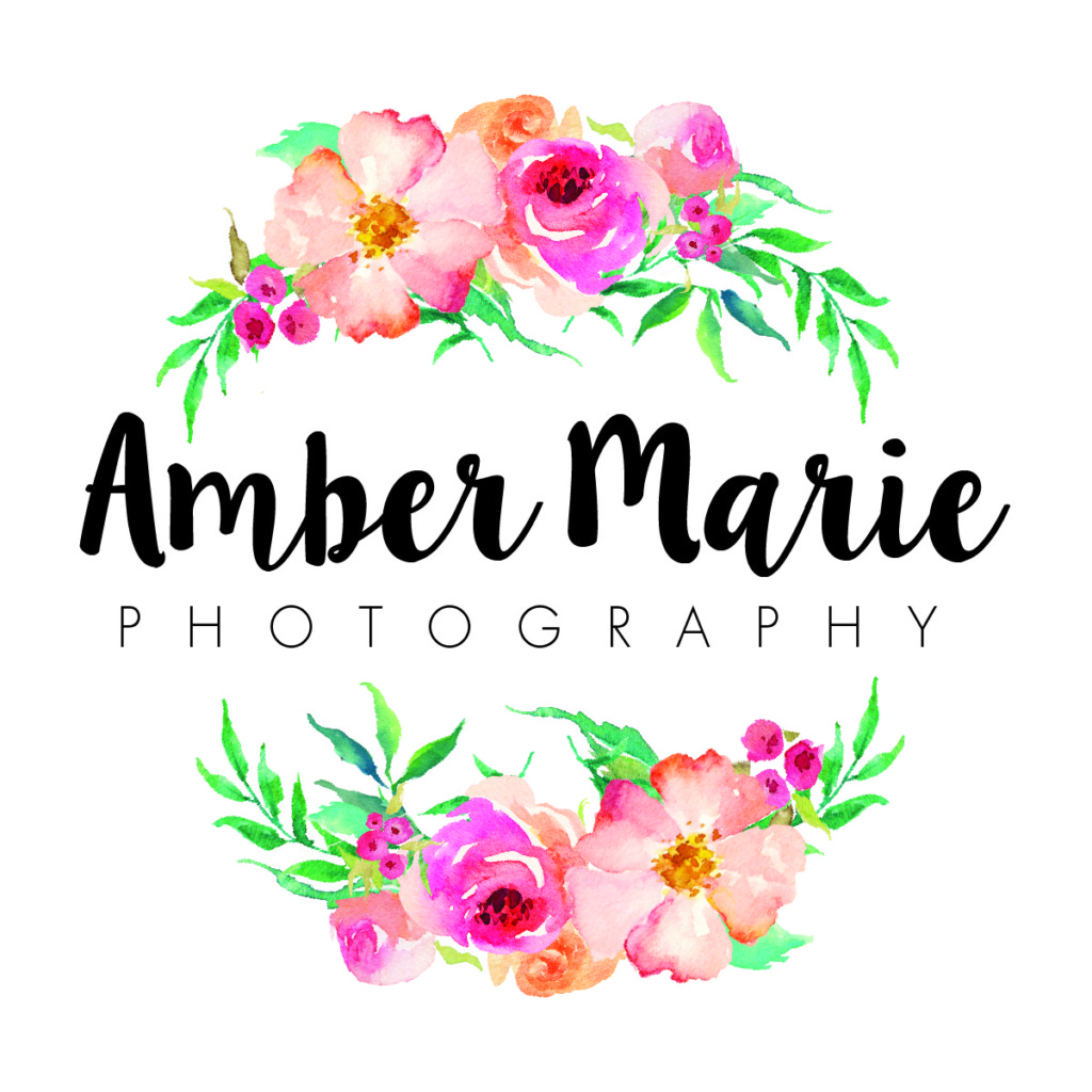 Amber Marie Logo | Twin Cities Moms Blog