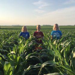 CommonGround | Twin Cities Moms Blog