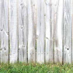 Fence-with-grass