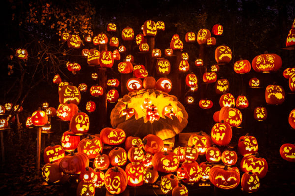 Jack O Lantern Spectacular | Twin Cities Moms Blog