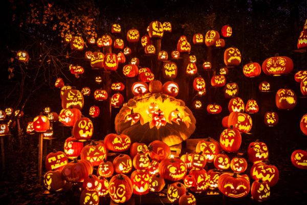 Jack O Lantern Spectacular | Twin Cities Moms Blog