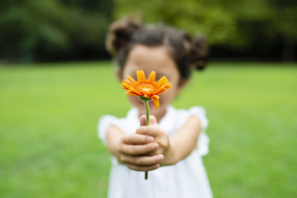 Why Gratitude? | Twin Cities Moms Blog