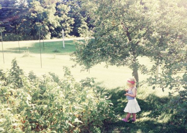 Gardening Lessons Teach Us More Than Gardening | Twin Cities Moms Blog