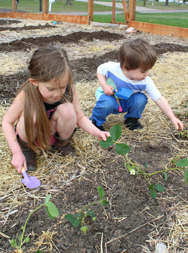 Tips for Gardening with Kids | Twin Cities Moms Blog