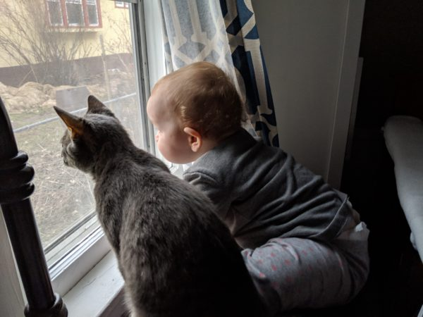 """Is An Apartment """"Enough""""? 