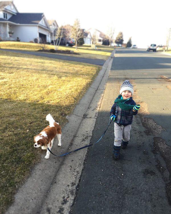 I Love Dogs, but I'm Glad I Don't Own One   Twin Cities Moms Blog