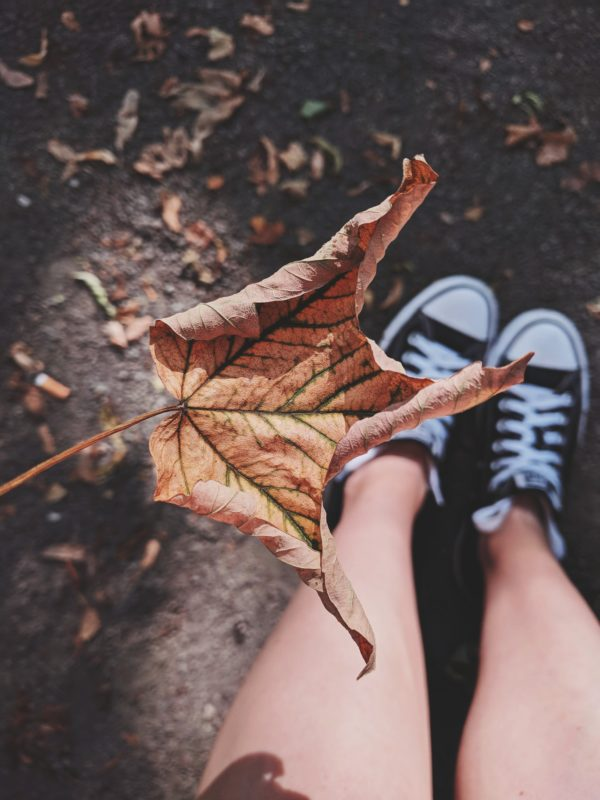 On Fall Leaves, Baby Hairs, and Relief   Twin Cities Moms Blog