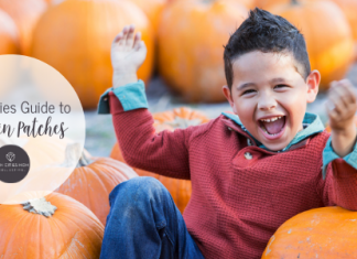 Twin Cities Pumpkin Patch Guide | Twin Cities Mom Collective