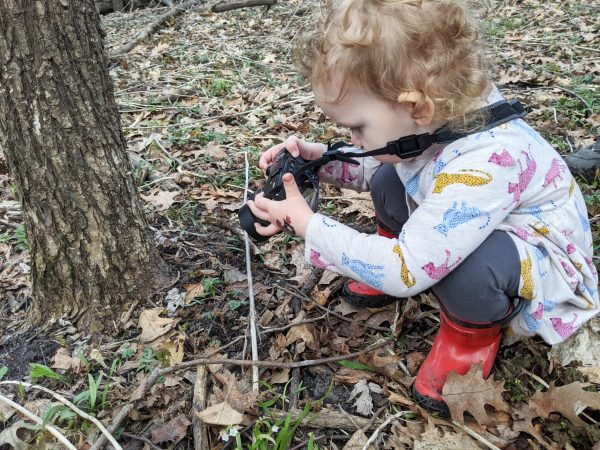 Spring Wildflowers to the Rescue! | Twin Cities Mom Collective