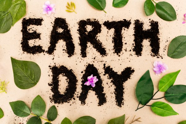 Earth Day: How Can We Celebrate Our Earth? | Twin Cities Mom Collective