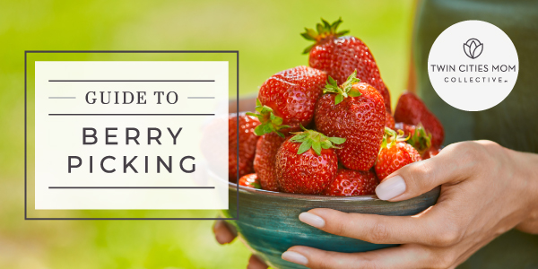 Berry Picking Guide | Twin Cities Mom Collective