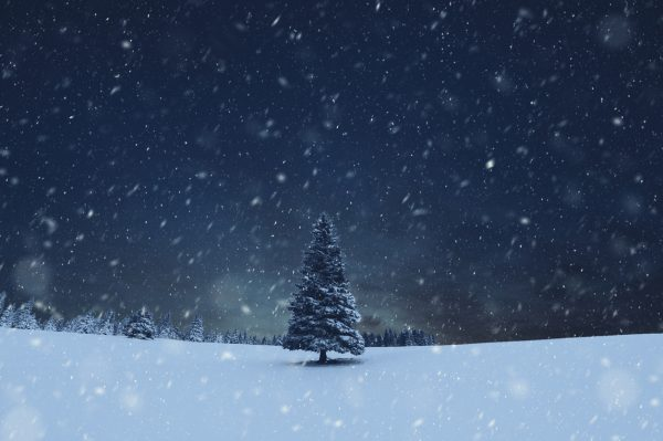 When It's Dark at Christmas | Twin Cities Mom Collective