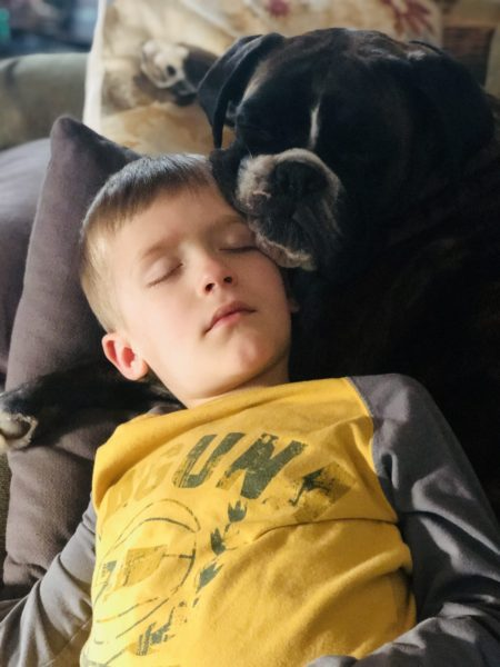 National Love Your Pet Day: A Retirement Home for Bailey   Twin Cities Mom Collective