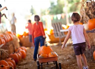 Fall Bucket List - Rear View of two children pulling wagon full of pumpkins