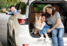 Asian mom with her son and daughter and dog. Road trip survival guide